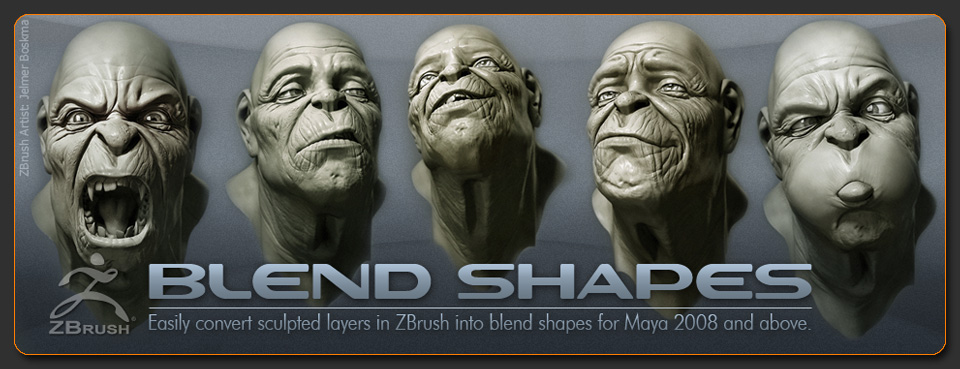 Blend Shapes Export plugin